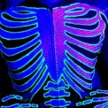 blacklight skeleton
